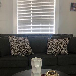 Other - Zebra Pillows (2)
